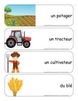 Étiquettes-mots géants-Récoltes-2