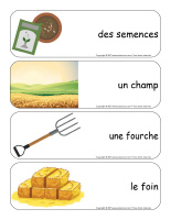 Étiquettes-mots géants-Récoltes-3