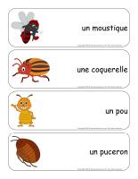 Étiquettes-mots géants-les bestioles-2