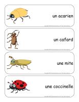 Étiquettes-mots géants-les bestioles-3