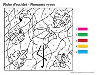 Fiches d'activité-Flamants roses