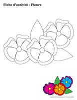 Fiches d'activité-Fleurs jeu apprendre