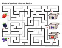 Fiches d'activité-Petits fruits