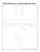 Fiches d'écriture-Flamants roses