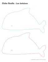 Fiches ficelle-Les baleines