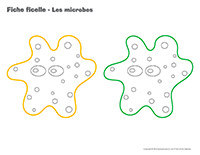 Fiches-ficelle-Les microbes