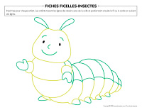 Fiches-ficelles-Insectes