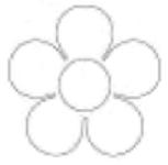 Fleurs en papier magique-1