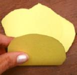 Fleurs en papier magique-4