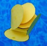 Fleurs en papier magique-5