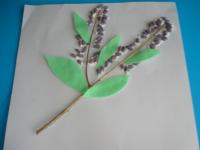 Grappe de lilas-11