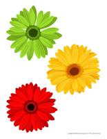 Gros autocollants-Fleurs décoration activité