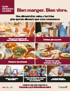 Guide alimentaire canadien-4069 HC Food-Guide-2