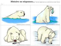 Histoire en séquence - Ours polaire