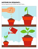 Histoire en séquence-Plantes