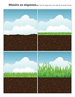 Histoires en séquence-L'herbe