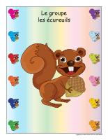 Identification groupe-Les écureuils