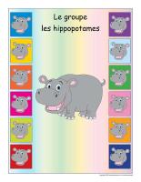 Identification groupe-Les hippopotames