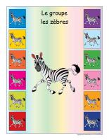 Identification groupe-Les zèbres