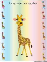 Identification groupe-les girafes