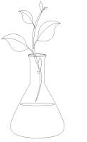 Images à colorier - Les sciences