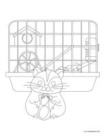 Images à colorier-Animaux domestiques