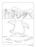 Images à colorier-Animaux polaires