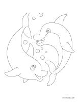 Images à colorier-Dauphins