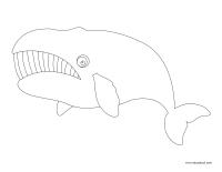 Images à colorier-Les baleines