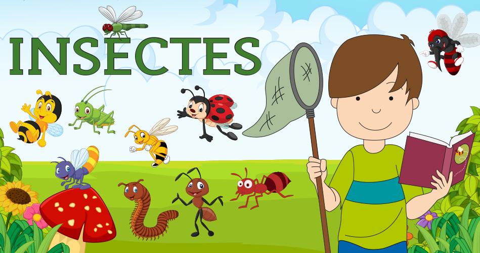 Coloriage Fleur Insecte.Les Insectes Activites Pour Enfants Educatout