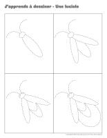 J'apprends à dessiner-Les lucioles