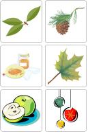 Jeu - L'arbre est dans ses feuilles
