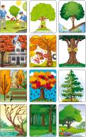 Jeu d'images - Les arbres