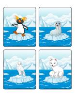 Jeu d'images-Animaux polaires-1