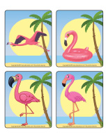 Jeu d'images-Flamants roses-1