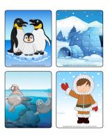 Jeu d'images-Le monde polaire-1