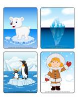 Jeu d'images-Le monde polaire-2