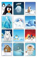 Jeu d'images-Les animaux polaires