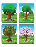 Jeu d'images-Les arbres-2