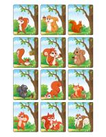 Jeu d'images-Les écureuils-3