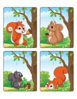 Jeu d'images-Les écureuils