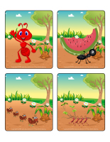 Jeu d'images-Les fourmis