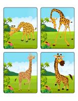 Jeu d'images-Les girafes