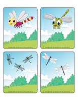 Jeu d'images-Les libellules-1