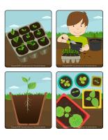 Jeu d'images-Les semences-1