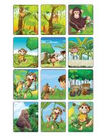 Jeu d'images-Les singes