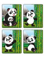 Jeu d'images-Pandas