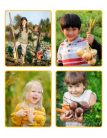 Jeu d'images-Récoltes-1