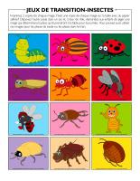 Jeux de transition-Insectes-1