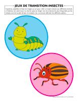 Jeux de transition-Insectes-2
